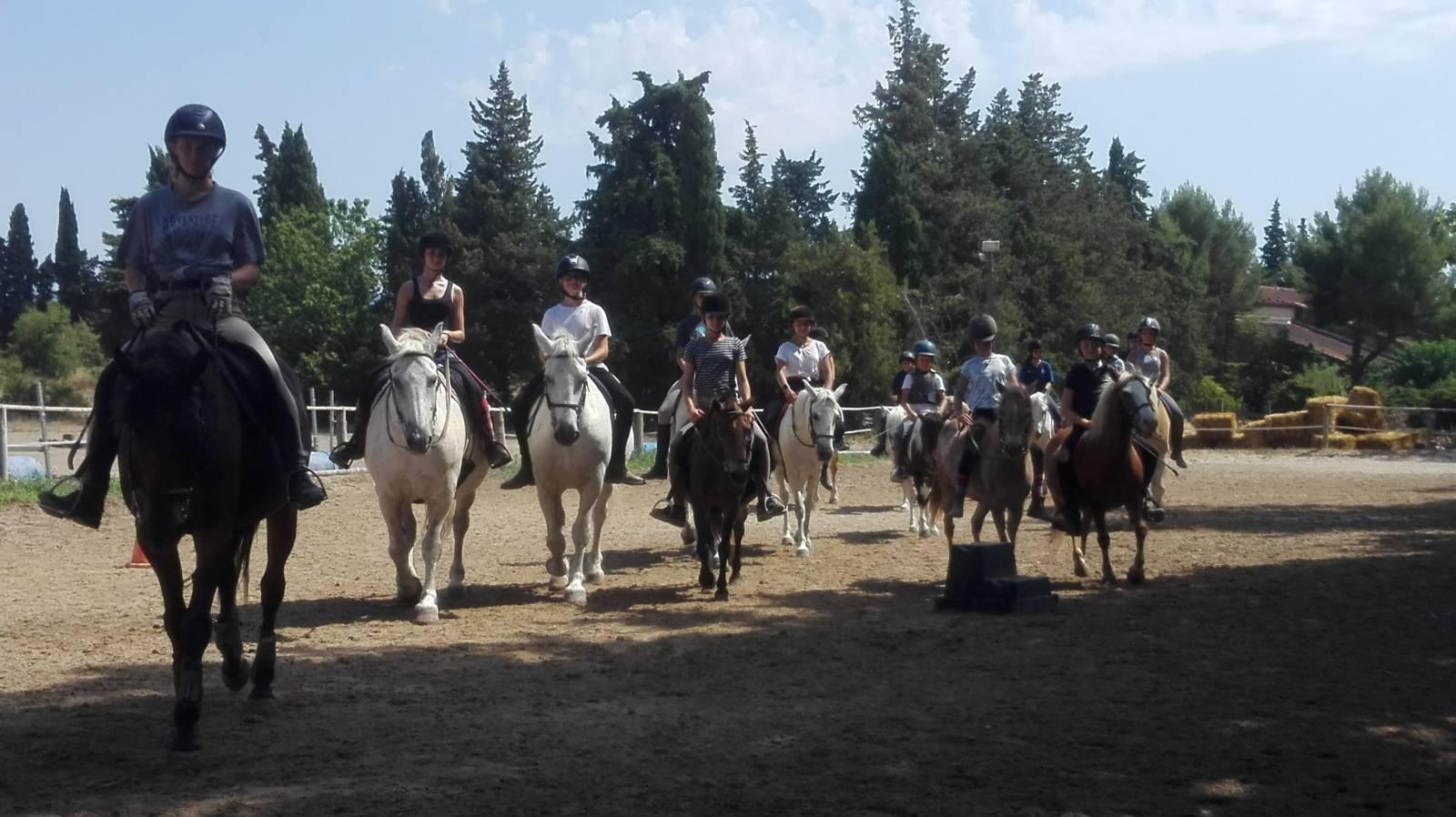 Faire Un Stage D Equitation Aux Vacances De La Toussaint Dans Le Vaucluse Pres De Gordes Haras De Lagnes